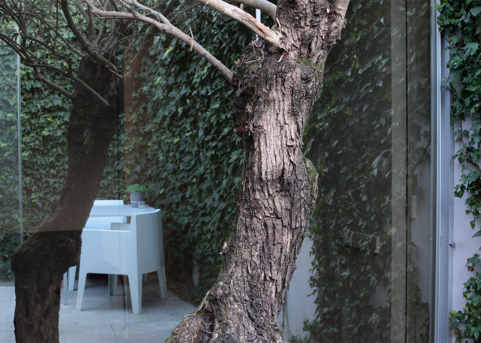 Architecture-courtyard-design-studia-interiors-osnovadesign-osnova-poltava-08