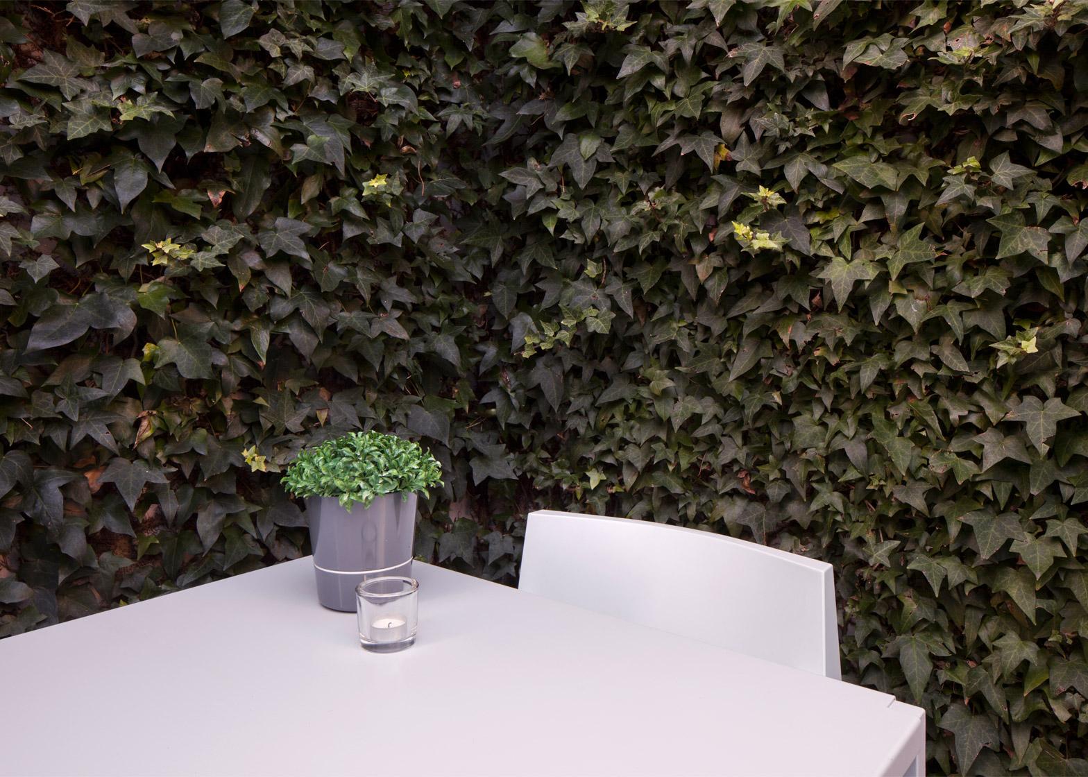 Architecture-courtyard-design-studia-interiors-osnovadesign-osnova-poltava-09