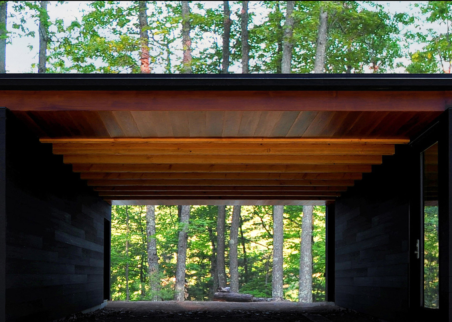 architecture_house_in_forest_design_studia_interiors_osnovadesign_osnova_poltava_03